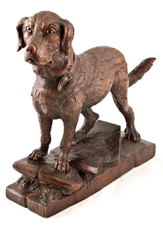 Black Forest Dog
