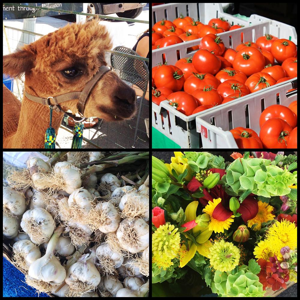 Aspen Farmers Market-3