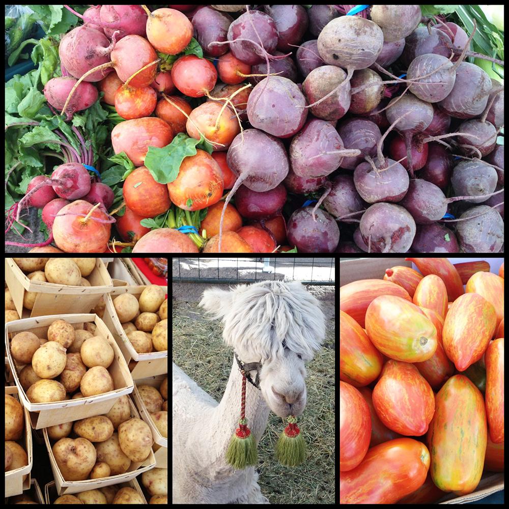 Aspen Farmers Market-5