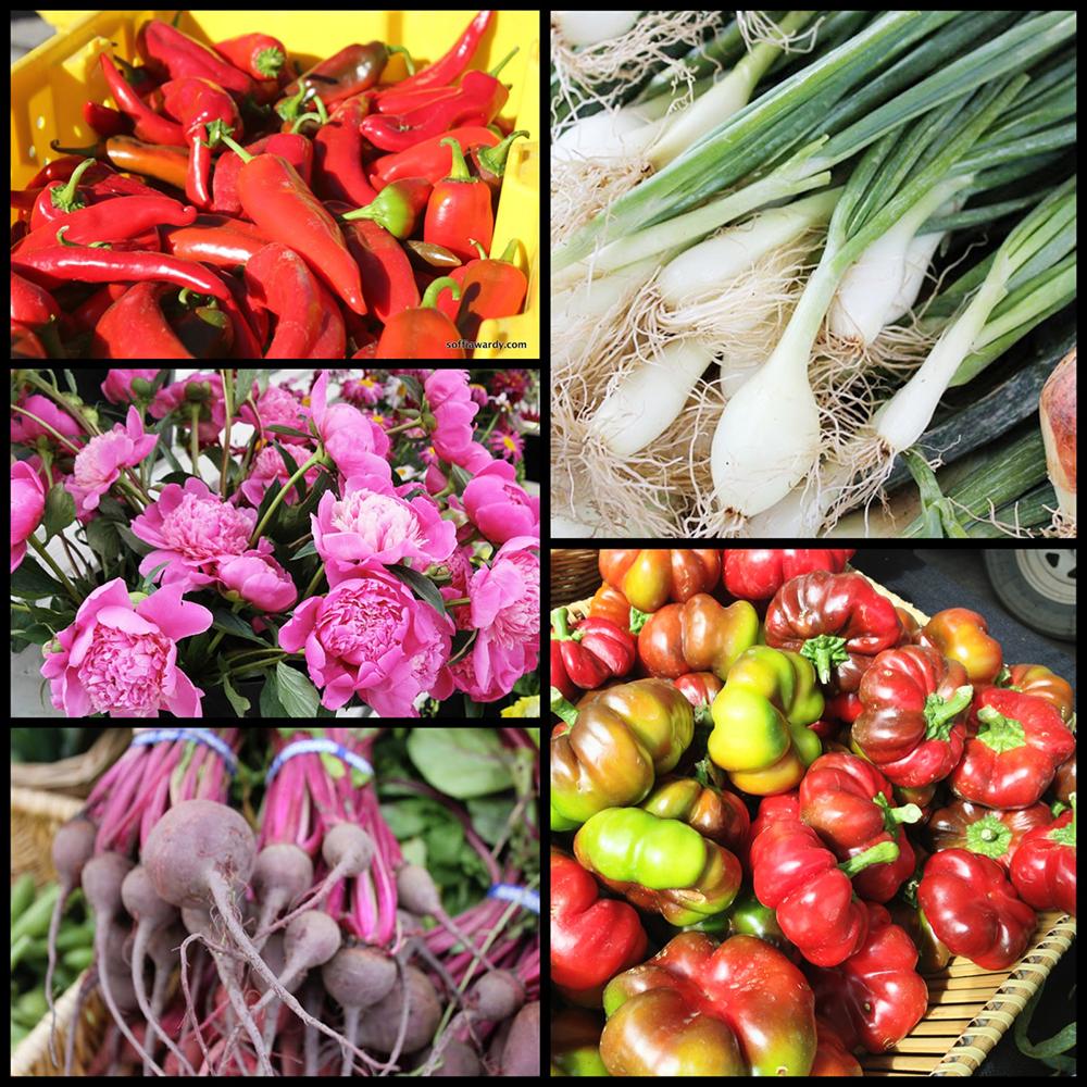 Aspen-Farmers-Market-8
