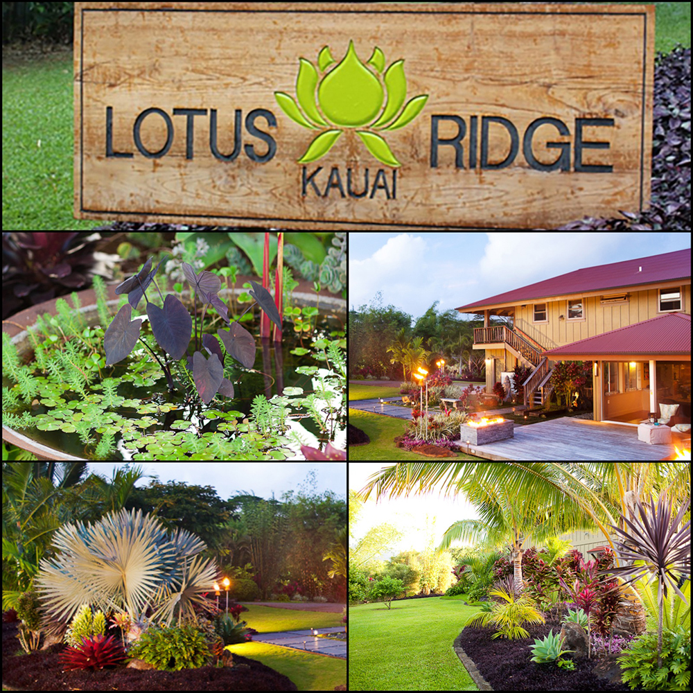 Lotus Ridge-6