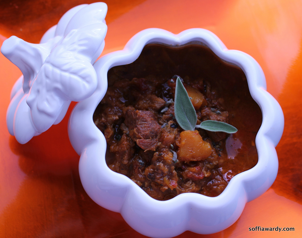 Pork & Butternut Squash Stew