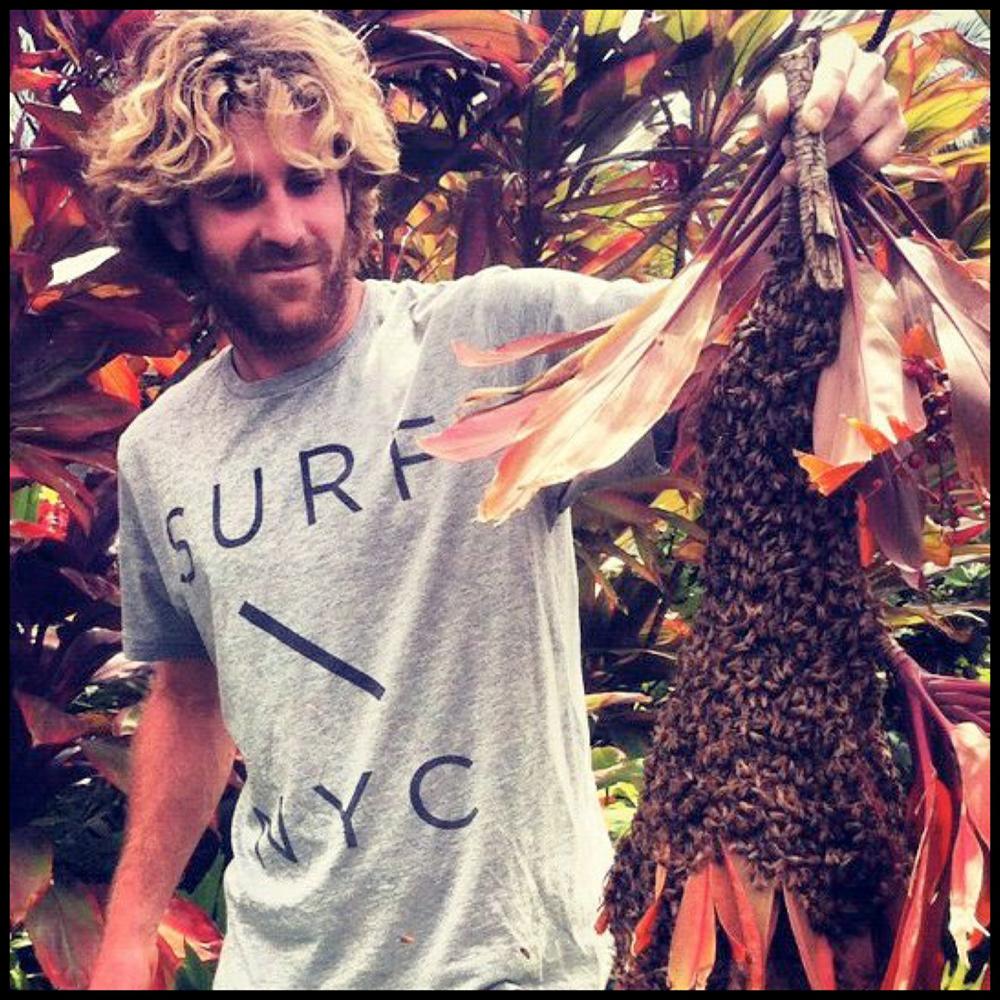 Aloha Honey Bee-Oliver Cohen