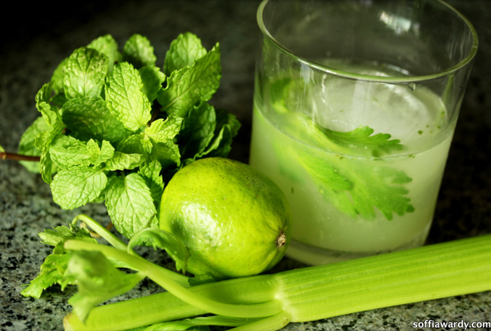 Celery Honey Mintress-slider