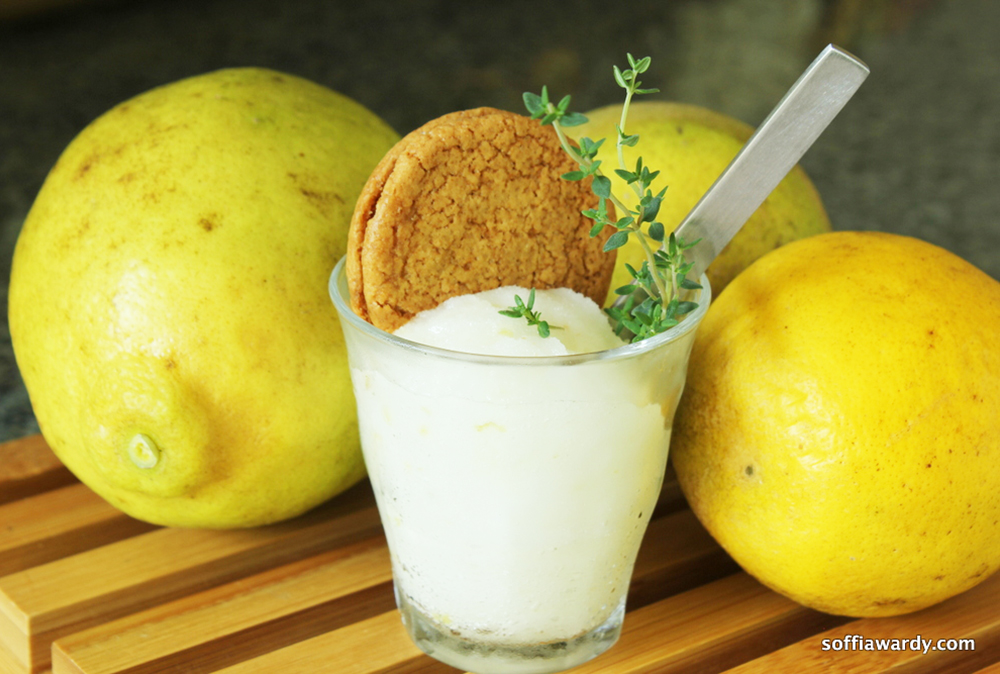 Meyer Lemon-Thyme Sorbetto | Desserts