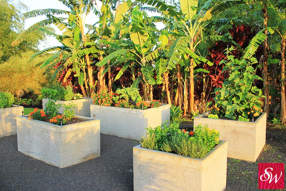 Chicken-al-Forno-garden