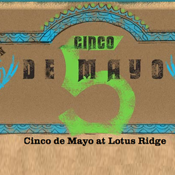 Cinco de Mayo Invite featured